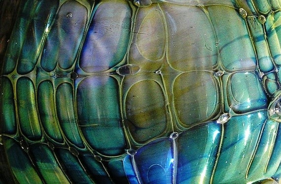 The Shy Oyster Lampwork Focal Bead from Dancing with Glass SRA UK FHFteam Y3