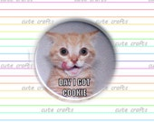 LOL CATS memes 1-inch MAGNET