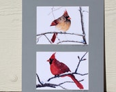 bird painting- Mister and Mrs Cardinal- double 5x7 watercolor prints matted to 11x14