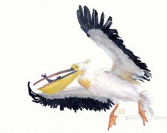 ocean watercolor- Pelican's Catch- animal art print