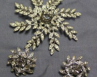 Sarah Coventry fern rhinestone brooch and earrings