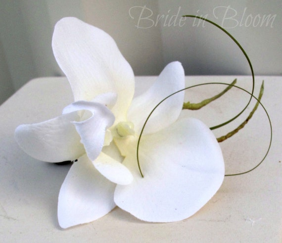 Wedding Boutonniere White orchid Boutonniere Groom Groomsmen Boutonnieres