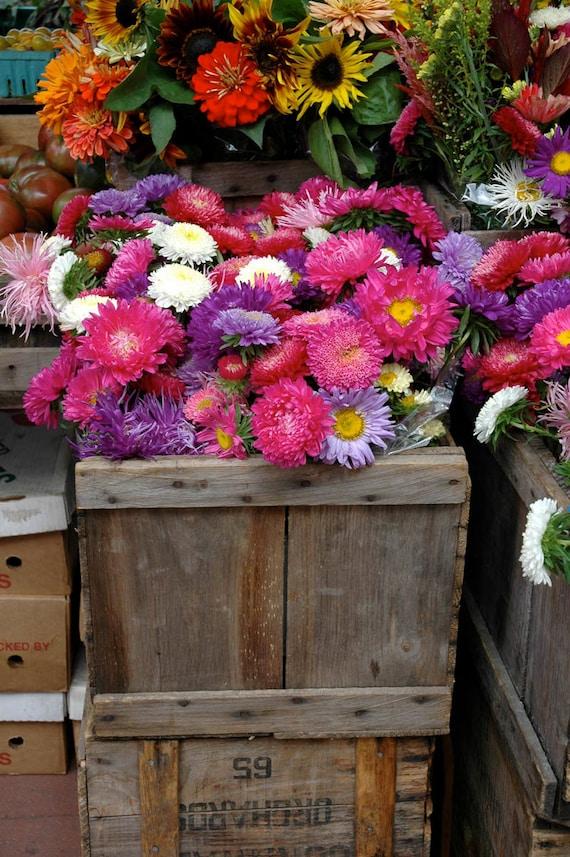 Flowers in Farmer's Market - 8 x 10 Photo Art Print_Reds & purples_ Kitchen Decor