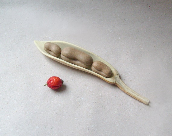 Bean pod- kitchen decoration