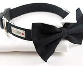 The Groom Dog Collar in Black