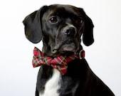 Winterberry Holiday Red Tartan Dog Bowtie Collar
