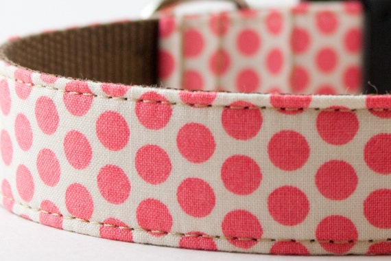Pretty in Pink Honeycomb Dog Collar