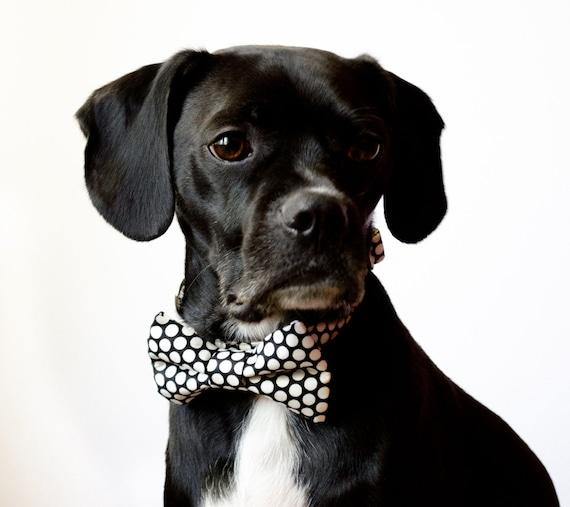 Black Honeycomb Dog Bow Tie Collar