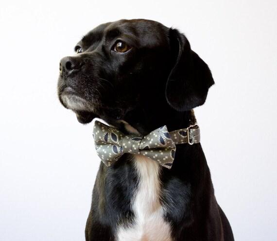 Gray Thistle Dog Bowtie Collar