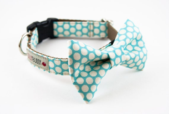 Aqua Blue Honeycomb Bowtie Dog Collar