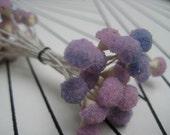 5 Unique Vintage Purple and Pink Millinery Flower Stamens