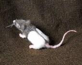 Myra -- Hooded Mouse Brooch