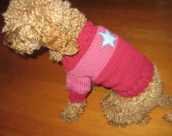 A handknit dog sweater with a fetching stripe and star