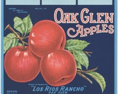1950s Red Apples Oak Glenn Yucaipa CA Orchard Fruit Kitchen Decor Ad Art
