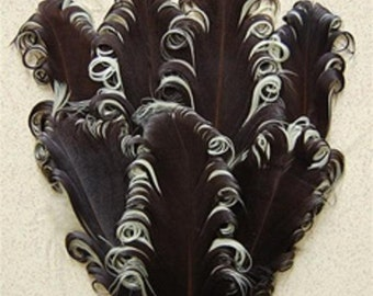 Brown and Beige Nagorie Feather Pad