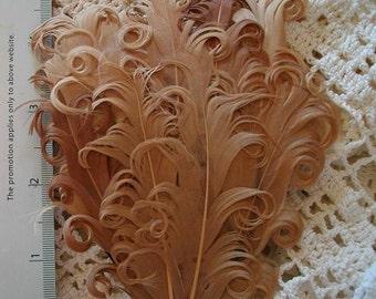 Caramel Brown Nagorie Feather Pad