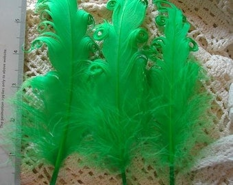 3 Loose Nagorie Feathers - Lime Green