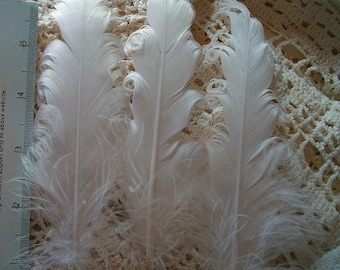 3 Loose Nagorie Feathers - White