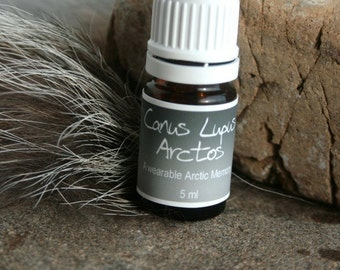 Canus Lupus Arctos - Amaguq - a wearable scent memory - artisan oil - leather, ice, spice, heat, cloves