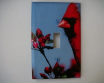 SWITCH PLATE COVER - Cardinal
