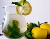 BERGAMOT & MINT - 4oz Unisex Cologne / Perfume - Citrus Aromatic Fragrance Family / Main Accords; Aromatic, Citrus, Fresh Mint, Fresh, Clean