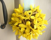 Hanging Yellow Blooming Pomander