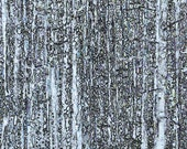 Trees Print Black Forest2