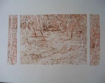 Print Autumn Trees Drypoint