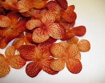 One Lot of 100 Hydrangea Blossoms in Rust Orange