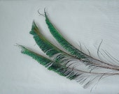 Sale - Peacock Swords - Natural was 4.00 now 3.00