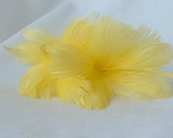2 Yellow Feather Flowers