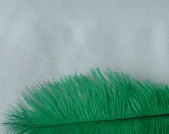 Emerald Green Ostrich Feathers