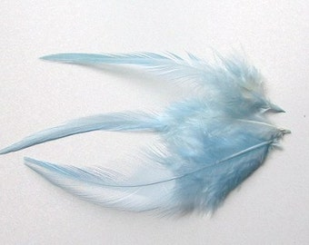 Loose Hackle Feathers - Pale Blue