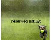 Reserved Listing for alexandra.