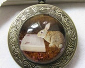 rabbit is reading a book vintage style Pocket watch Locket Necklace----- from my own art work
