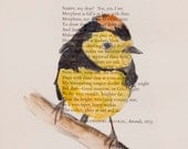 Yellow Bird - Original Watercolor Painting - on Antique Book page -6 1/2x8inches - NEW