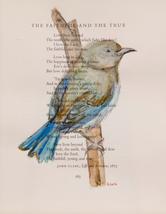 Teal Bird - Original Watercolor Painting - on Antique Book page - 6 1/2x8inches - NEW
