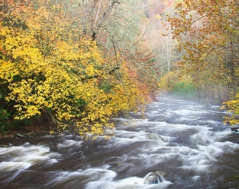 Photograph Fall Smoky Mountains Stream