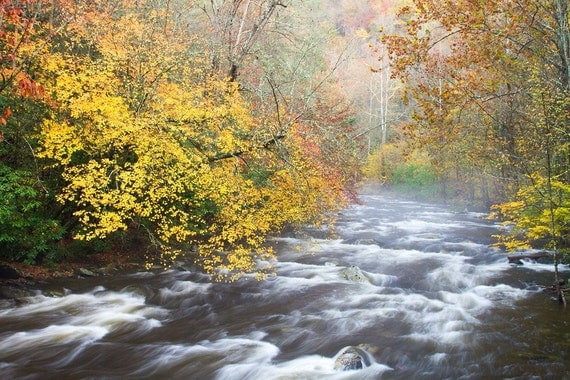 Photograph Fall in the Smoky Mountain Stream 8 x 10, 8 x 12 or 11 x 14