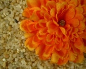 ORANGE pom pom mum FLOWER hai clip