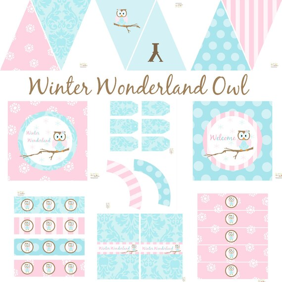 Winter Wonderland Owl Decorations for Birthday Party or Baby Shower ...