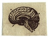 Anatomical Art Screen Print DIY Clothing Patch Antique Style Brain