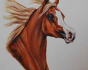 Horse portrait painting, custom horse painting on 11 x 14 watercolor paper,  horse portraits from your photos