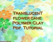 Polymer Clay Tutorial - Translucent  flower cane Technique