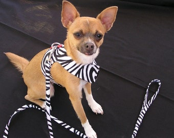 Zesty Zebra harness, medium or large