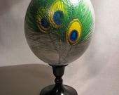 Ostrich Eggs - Peacock