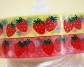 Retro Strawberry Deco Tape Adhesive Stickers 2 rolls