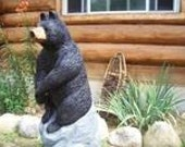 black bear sitting on rock