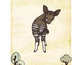 Okapi - 8x10 Print