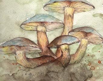 Perky Little Mushrooms